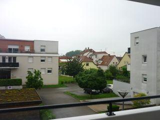 Appartement OSTWALD 84 (67540)