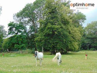 Haras / Equestre BLOIS 225 (41000)