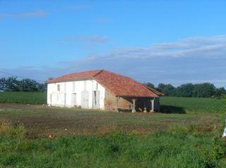 Grange CASTELNAU CHALOSSE 270 (40360)
