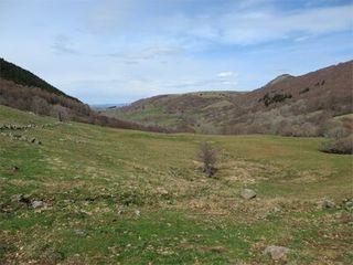 Terrain agricole RIOM ES MONTAGNES  (15400)