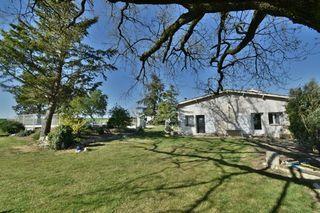 Maison en pierre SAINT PAUL D'ESPIS 114 (82400)