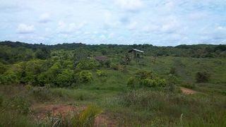 Terrain agricole MONTSINERY TONNEGRANDE  ()