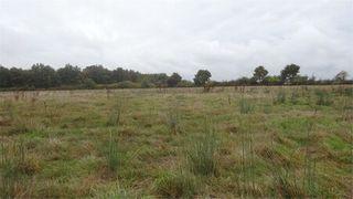 Terrain agricole SAINT SAUVEUR  (86100)