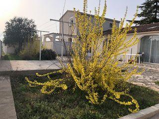 Immeuble de rapport VINON SUR VERDON  (83560)
