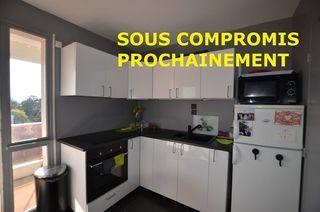 Appartement SAINT JEAN DE BRAYE 50 m² ()
