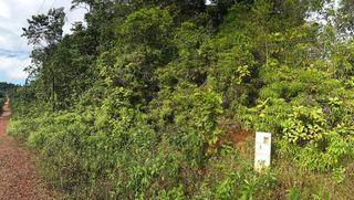 Terrain agricole ROURA  ()