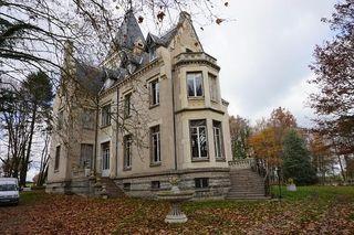 Château  CHENAY LE CHATEL 460 m² ()