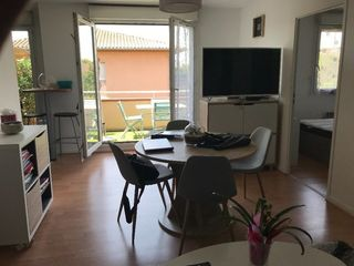 Appartement TOULOUSE 47 m² ()