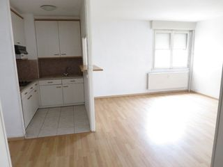 Appartement LOOS 48 m² ()