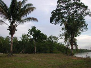 Terrain de loisir MACOURIA  ()